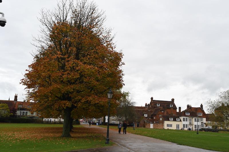 Salisbury - 19.jpg