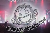 MonkeysOnCrack.png
