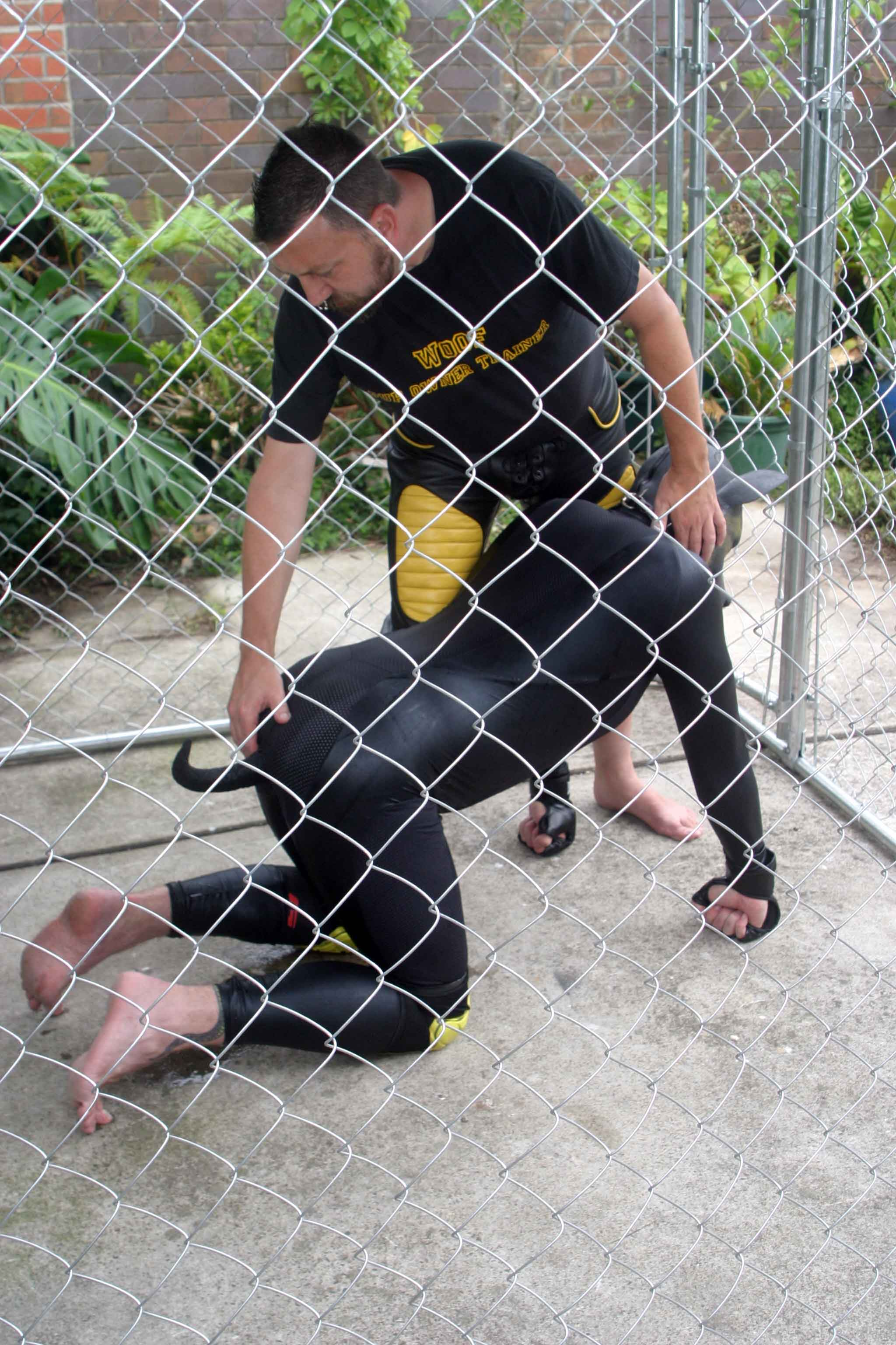 Pup-marking-12.jpg