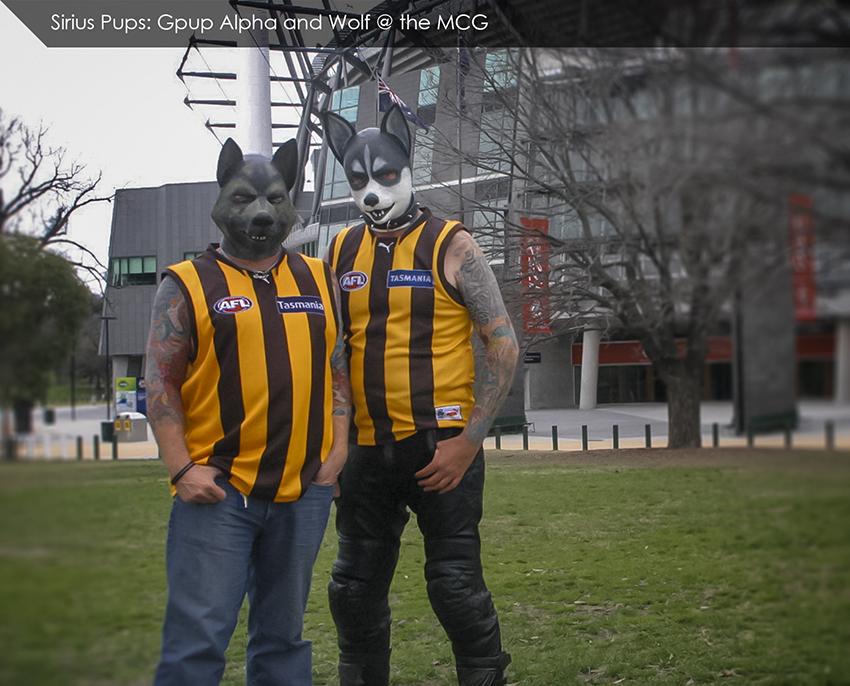 Alpha Wolf at MCG.jpg