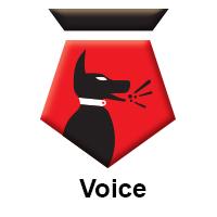TitledFCT-Voice.jpg