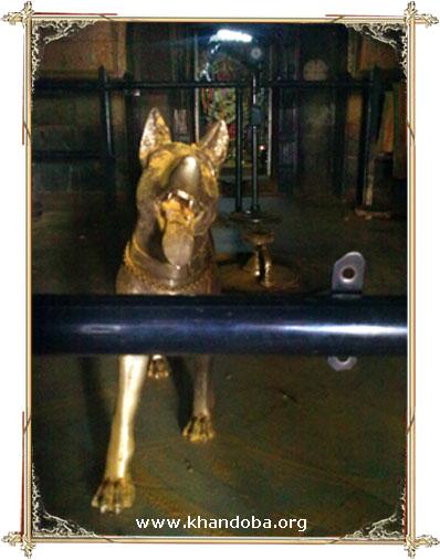 khandoba dog 1.jpg