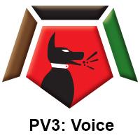 PV3 Voice.jpg