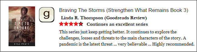 Braving the Storm Goodreads Review 1.png