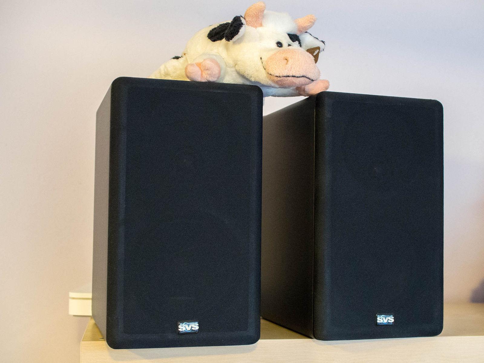 svs_speakers1.JPG