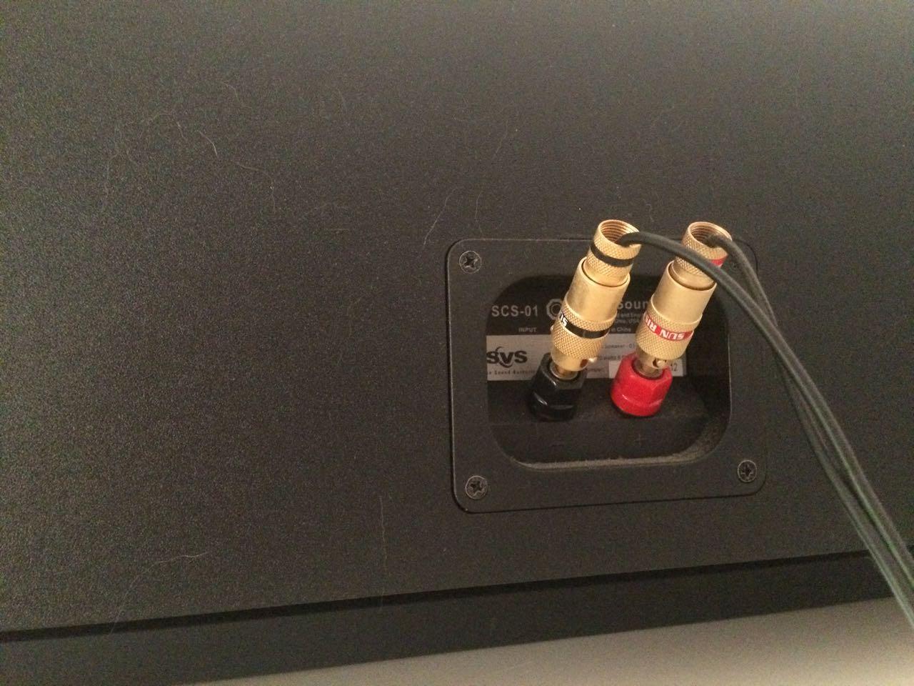 SVS SCS-01 Centre speaker (rear).jpg