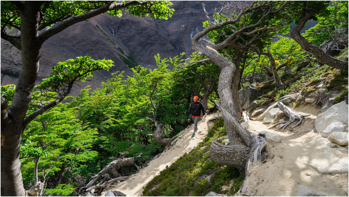 Patagonia STOMPED-27.jpg