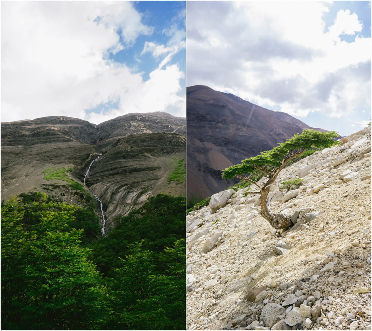 Patagonia STOMPED-20.jpg