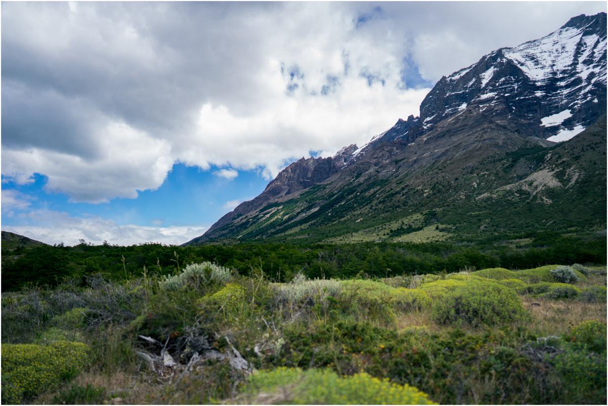 Patagonia STOMPED-34.jpg