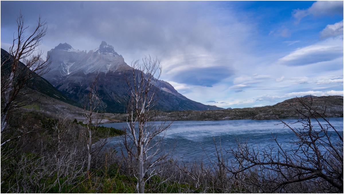 Patagonia STOMPED-63.jpg