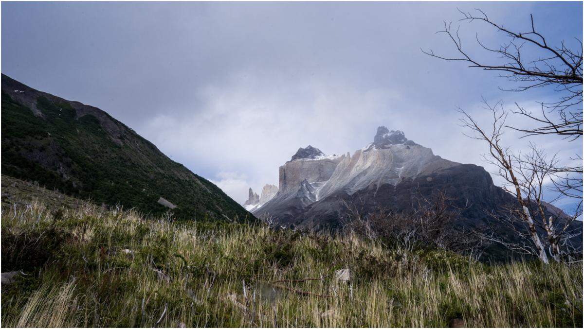 Patagonia STOMPED-60.jpg