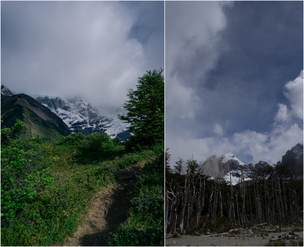 Patagonia STOMPED-57.jpg