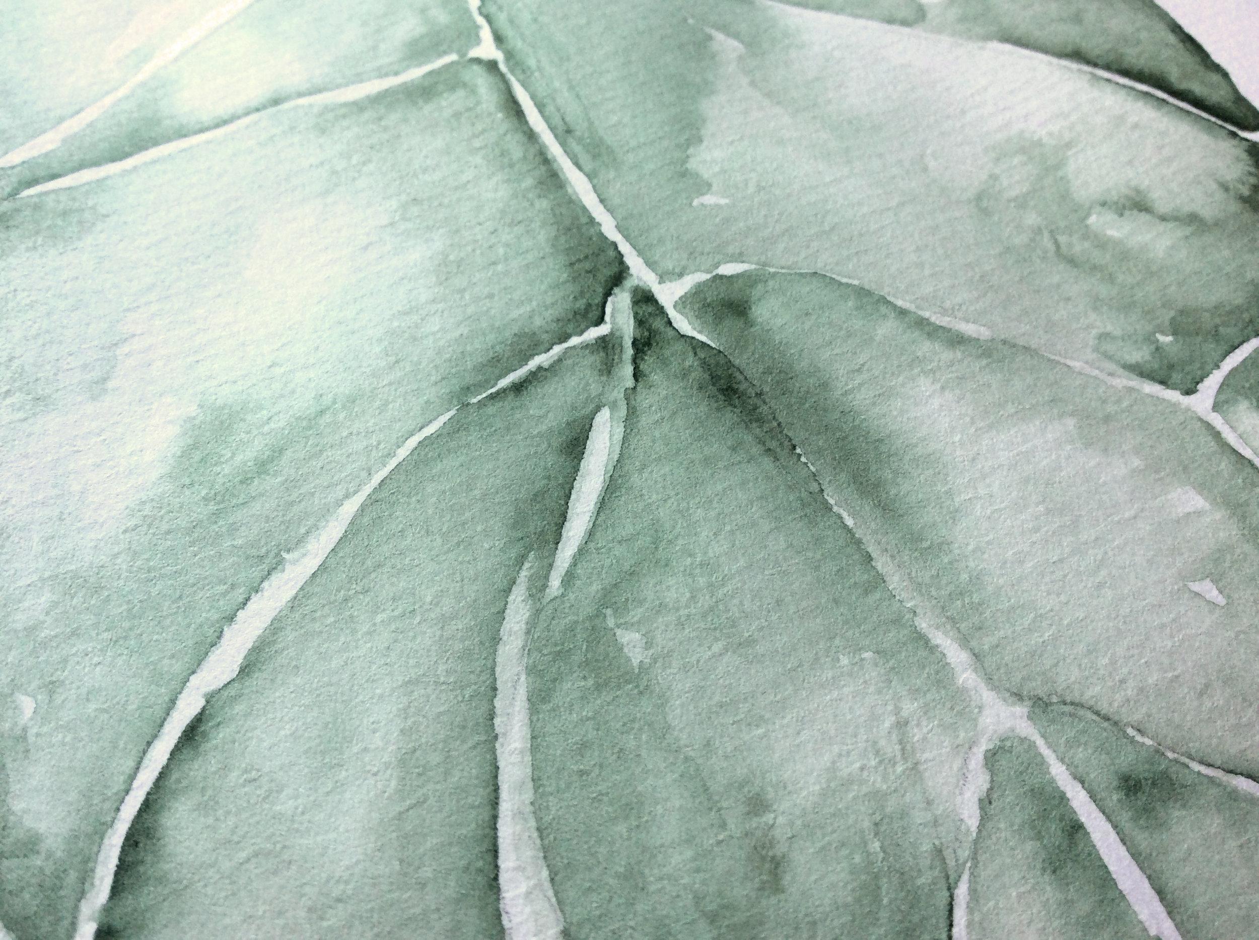 Akvarel / Blad tekstur