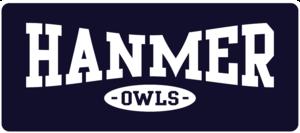 hanmer_owls_button