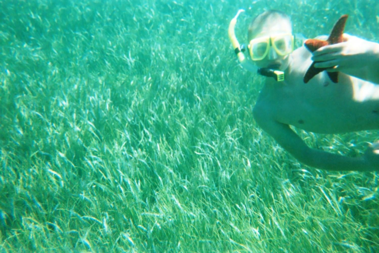 2015-Kaleb starfish.jpg