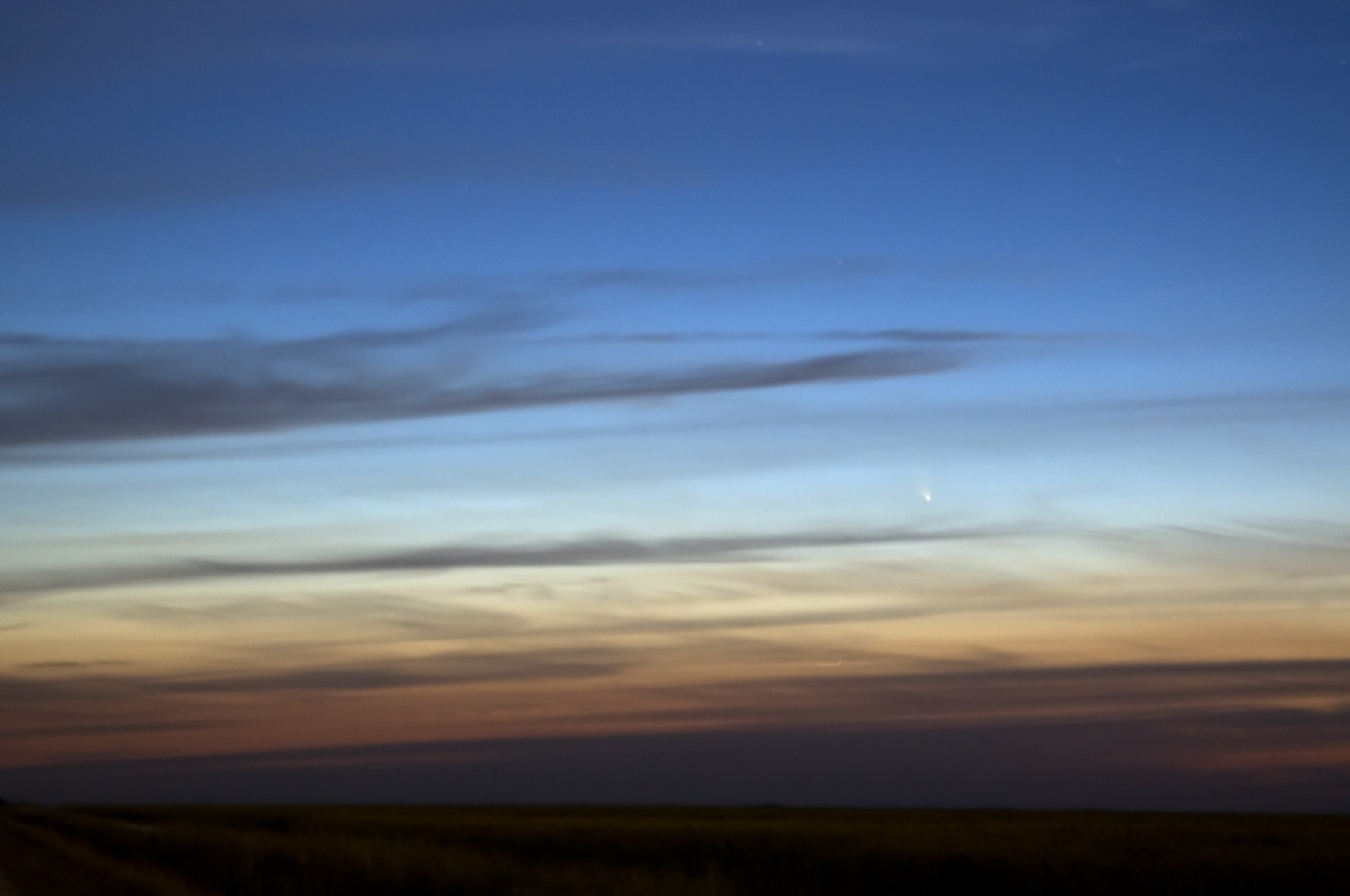 Comet PANSTARRS click to enlarge