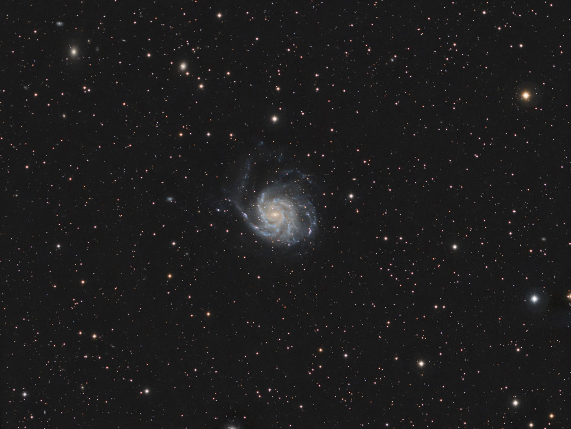 M101 full frame. Click to enlarge.