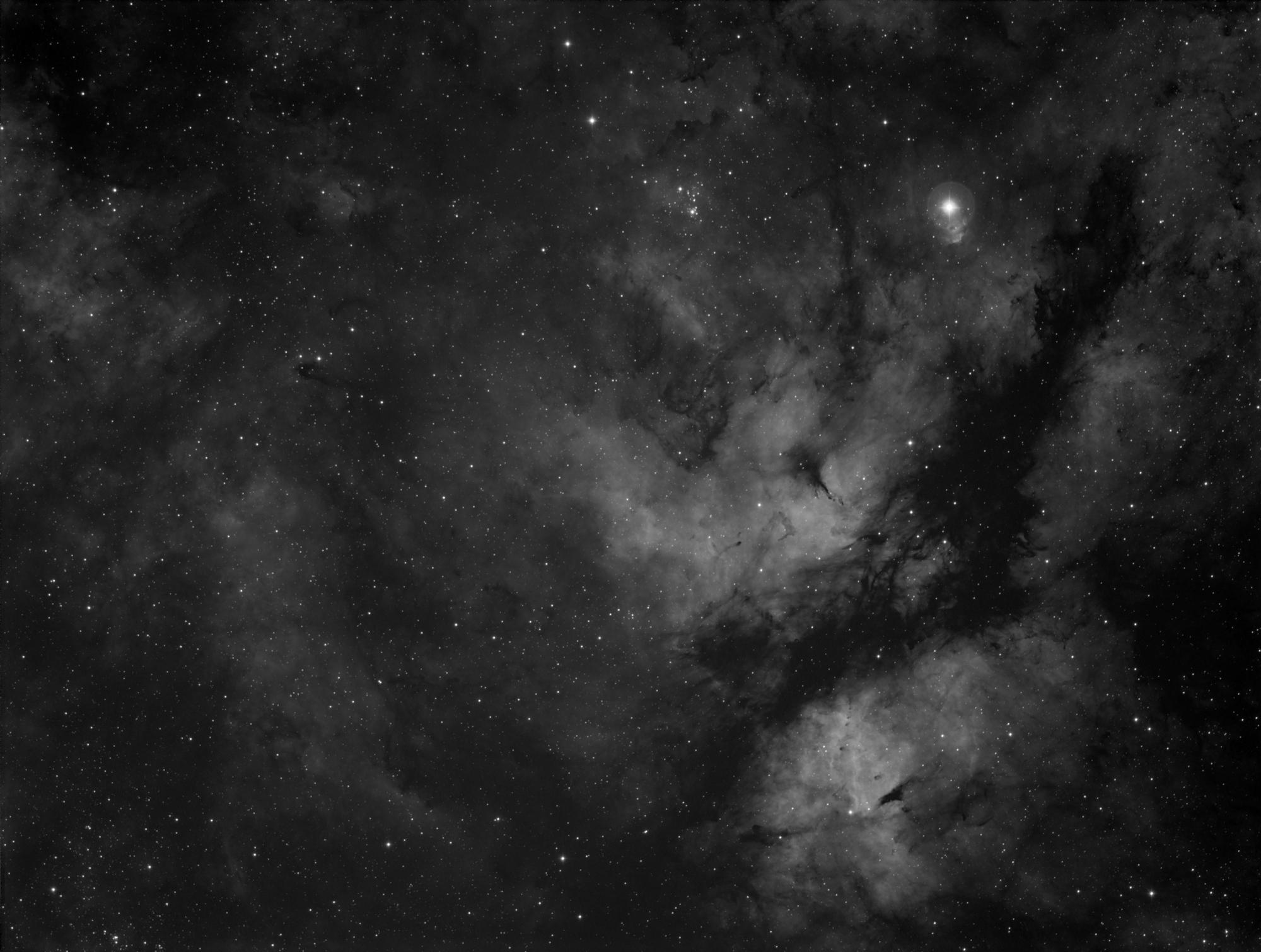 IC 1318 in near Gamma Cygni