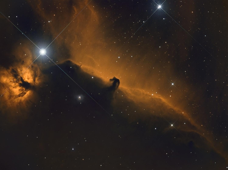 Horsehead Nebula: Davie, Fl