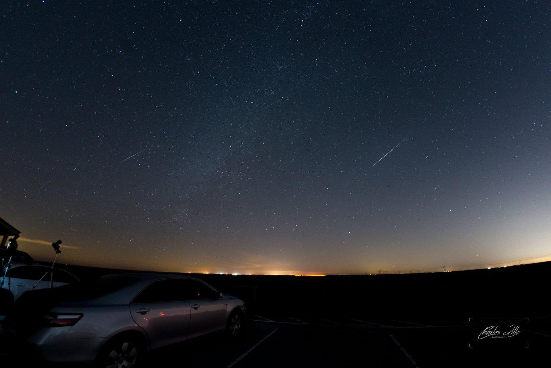 Geminids Meteor Shower: Florida Everglades