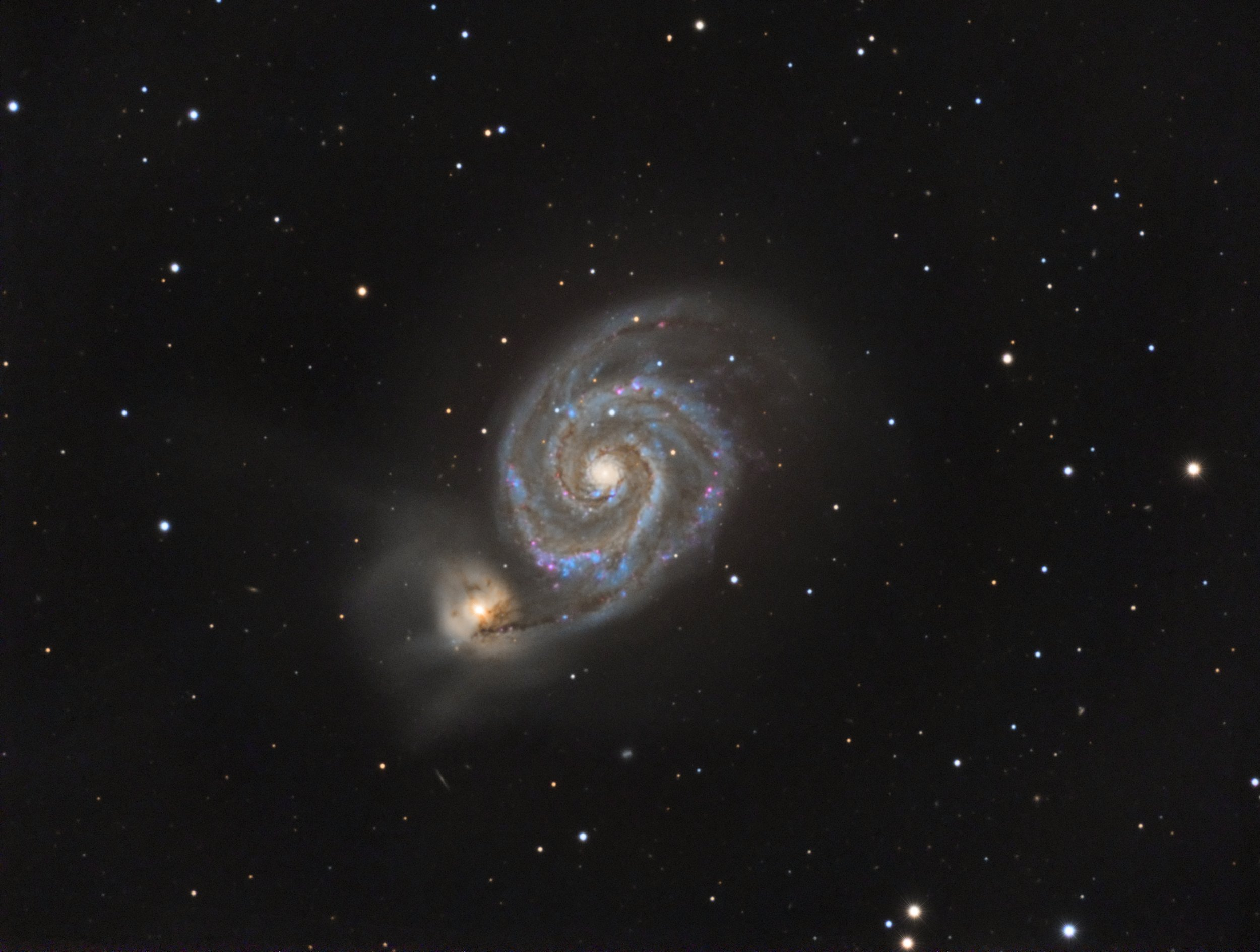 The Whirlpool Galaxy click to enlarge