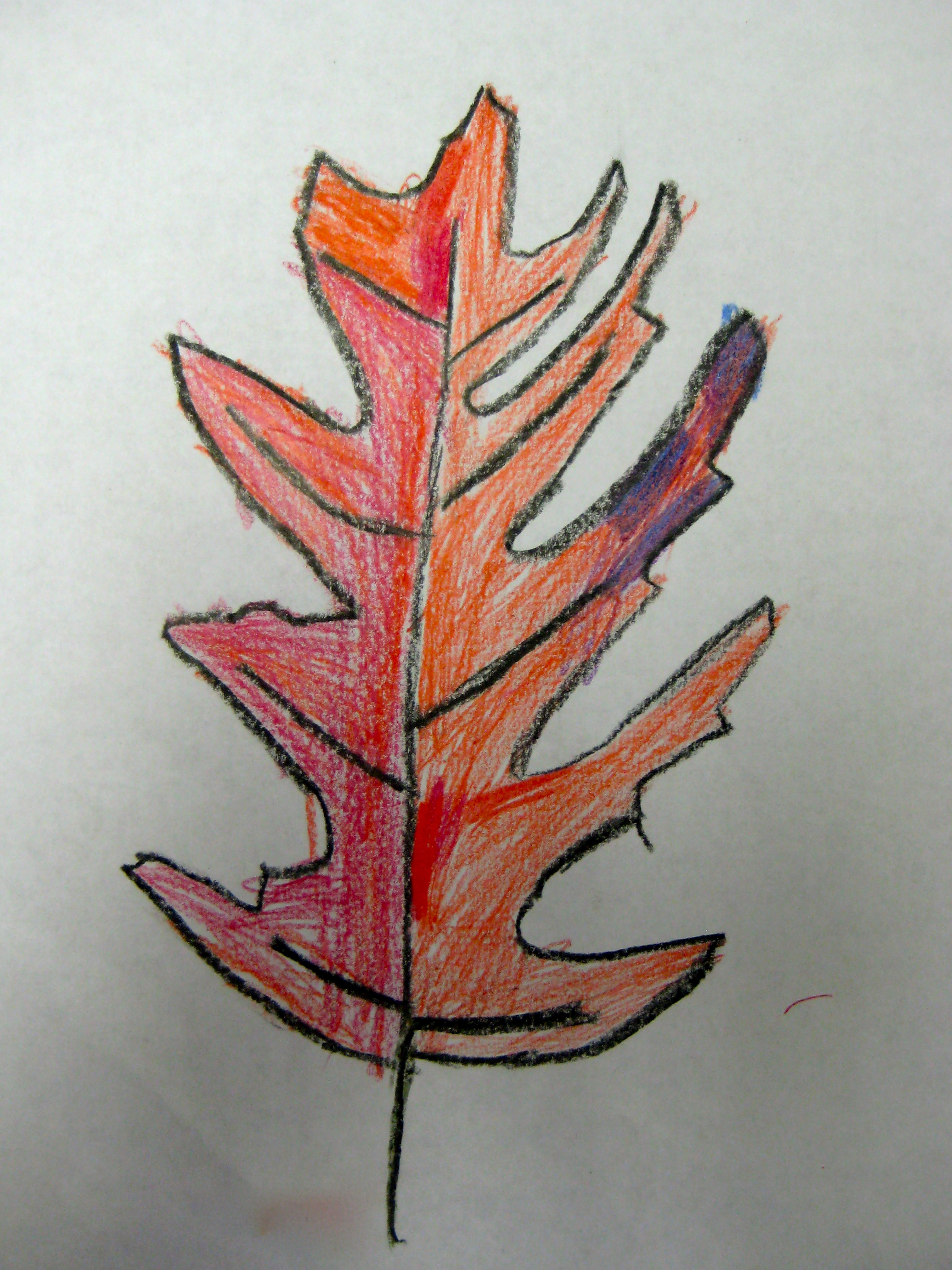 Third grade crayon drawing of a leaf.