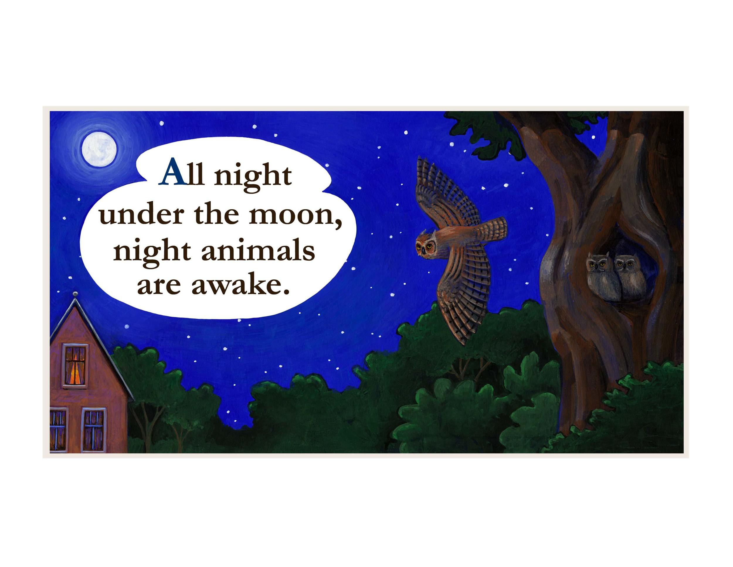 night animals book 8.jpg