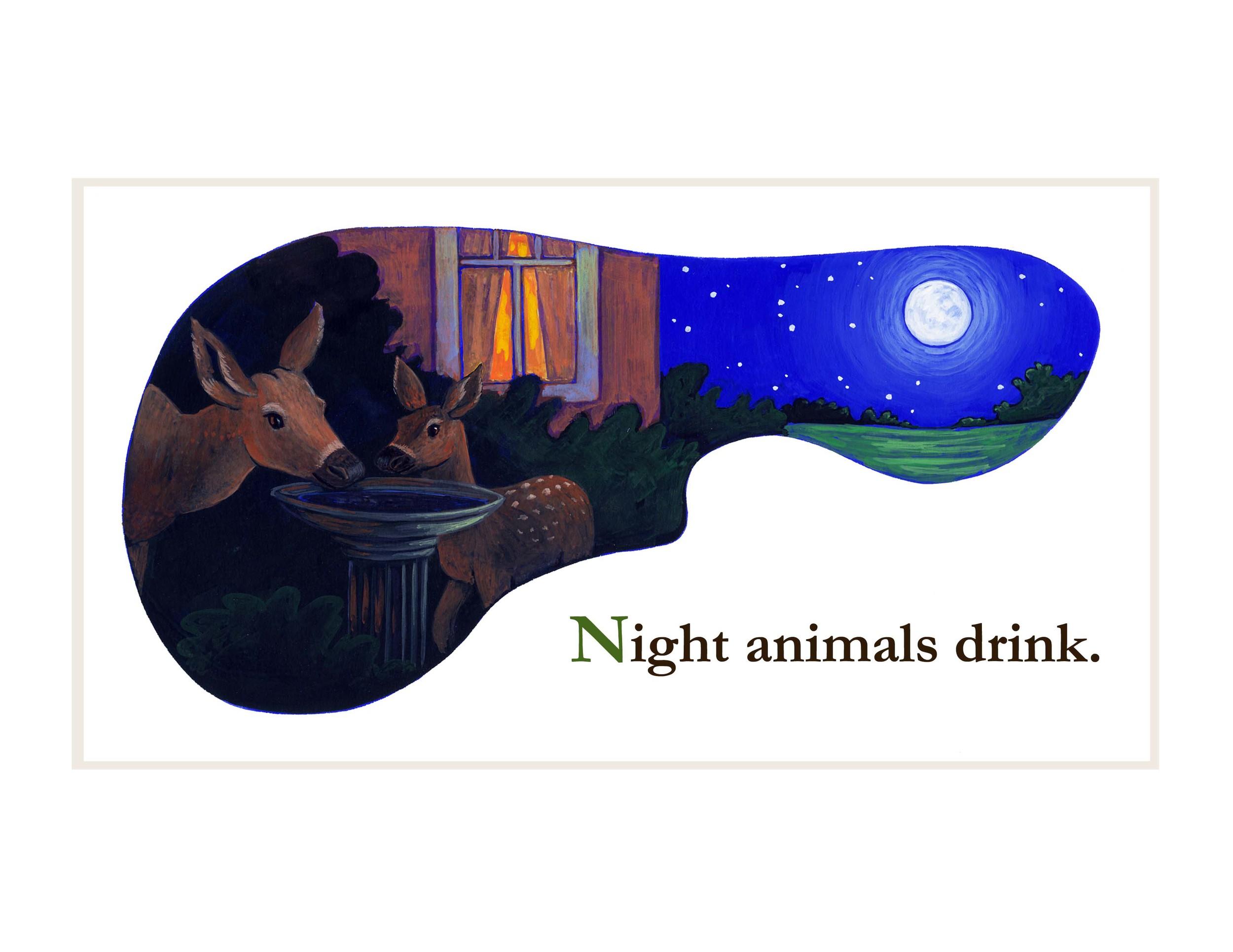night animals book 10.jpg