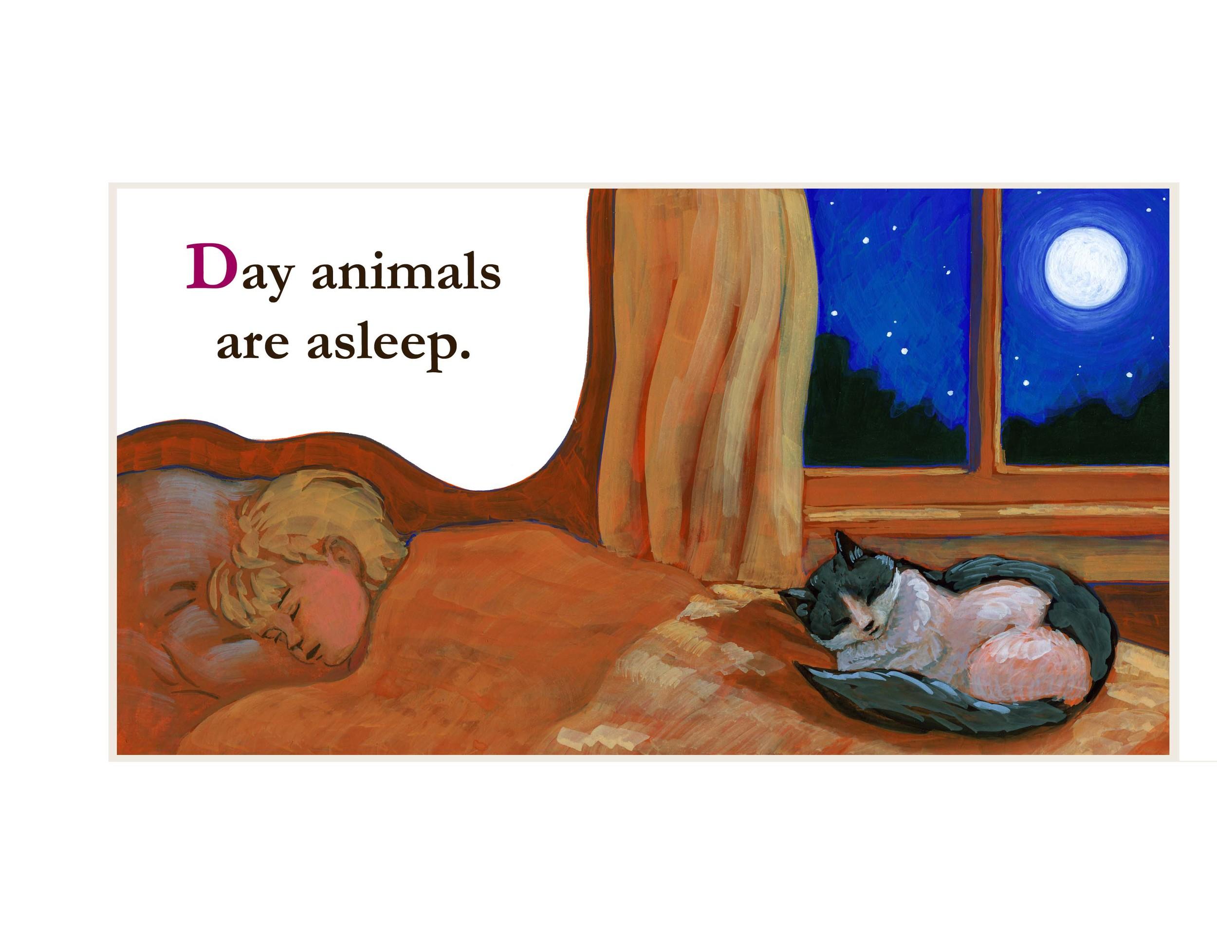 night animals book 13.jpg
