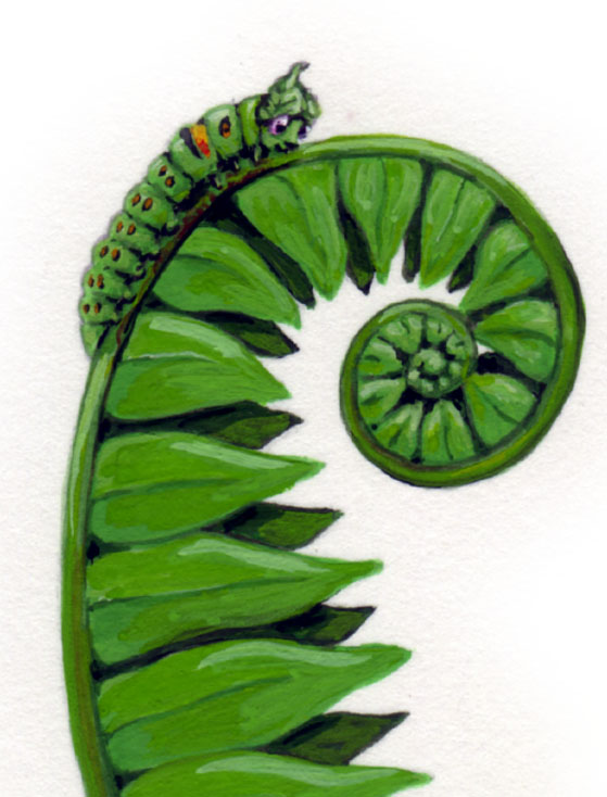 caterpillar on fern.jpg
