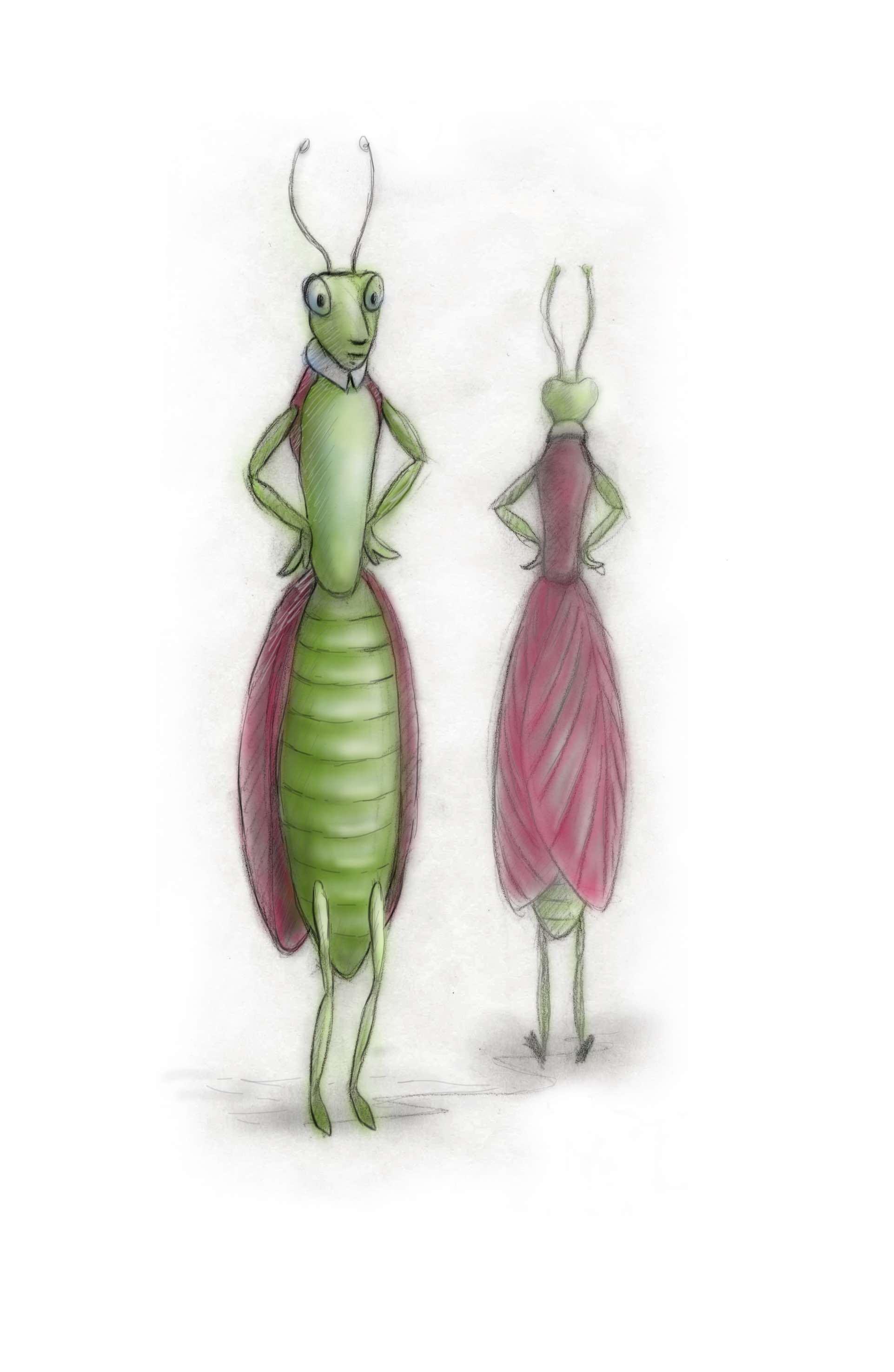 fashion bug praying mantis.jpeg