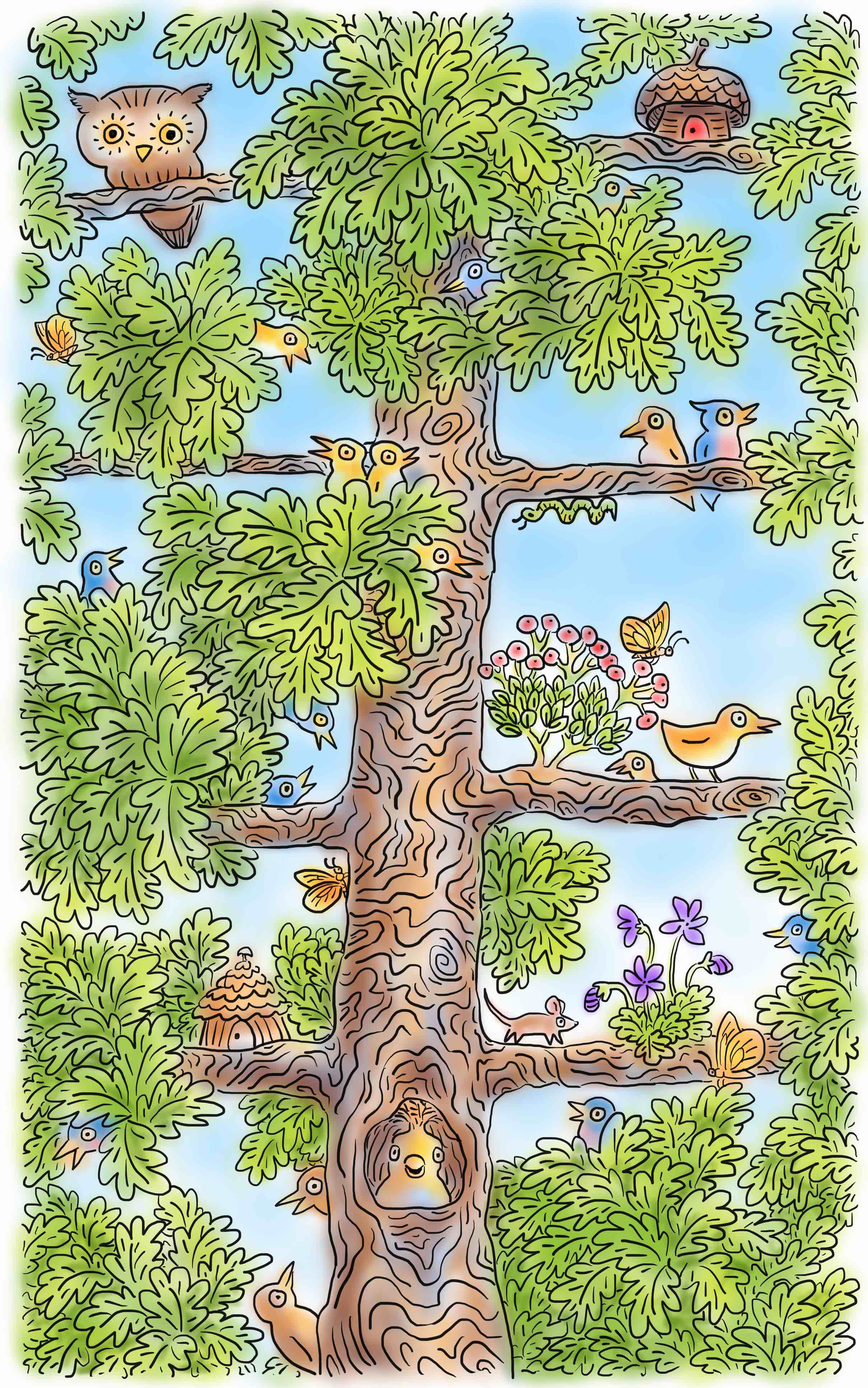 oak tree birds 3.jpeg