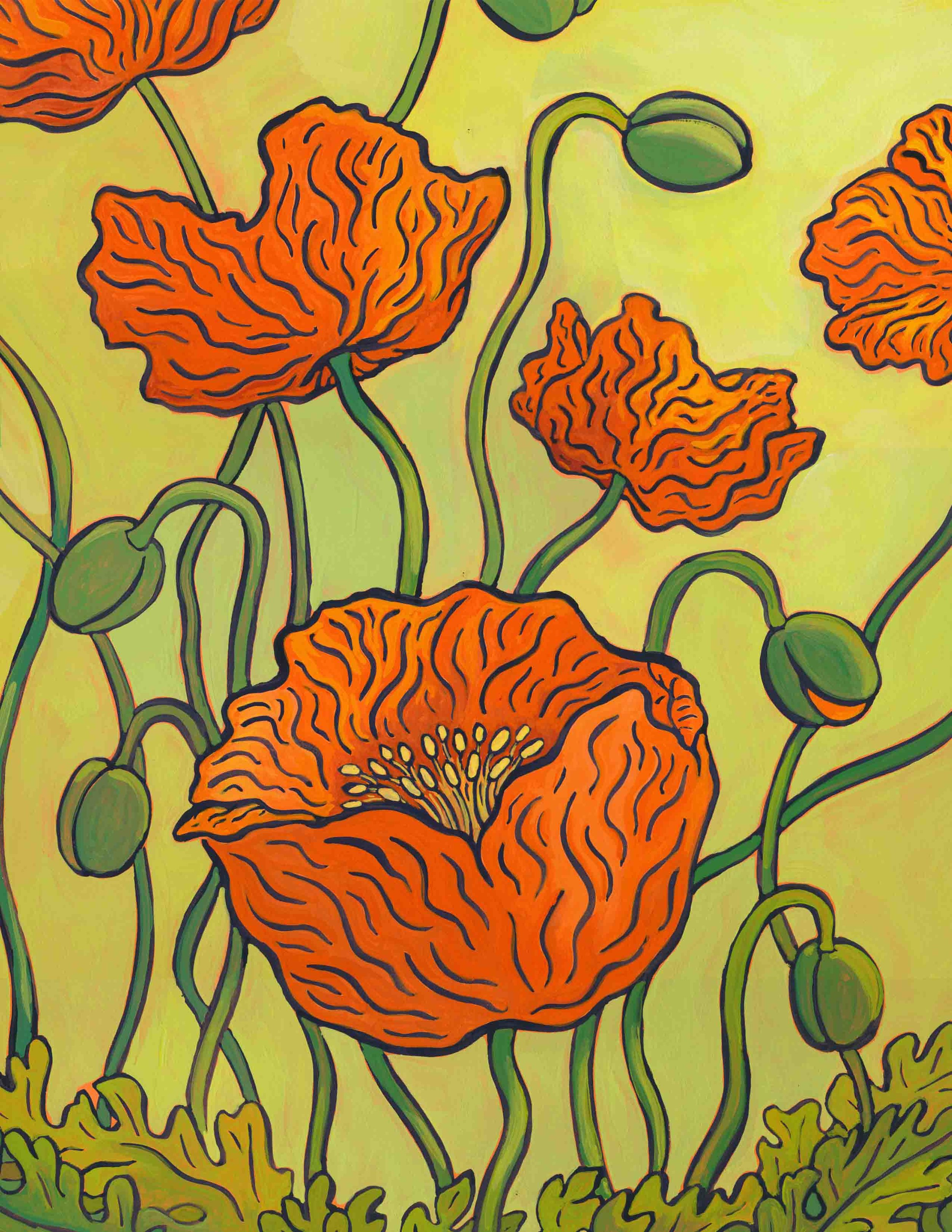 orange iceland poppies 2.jpg