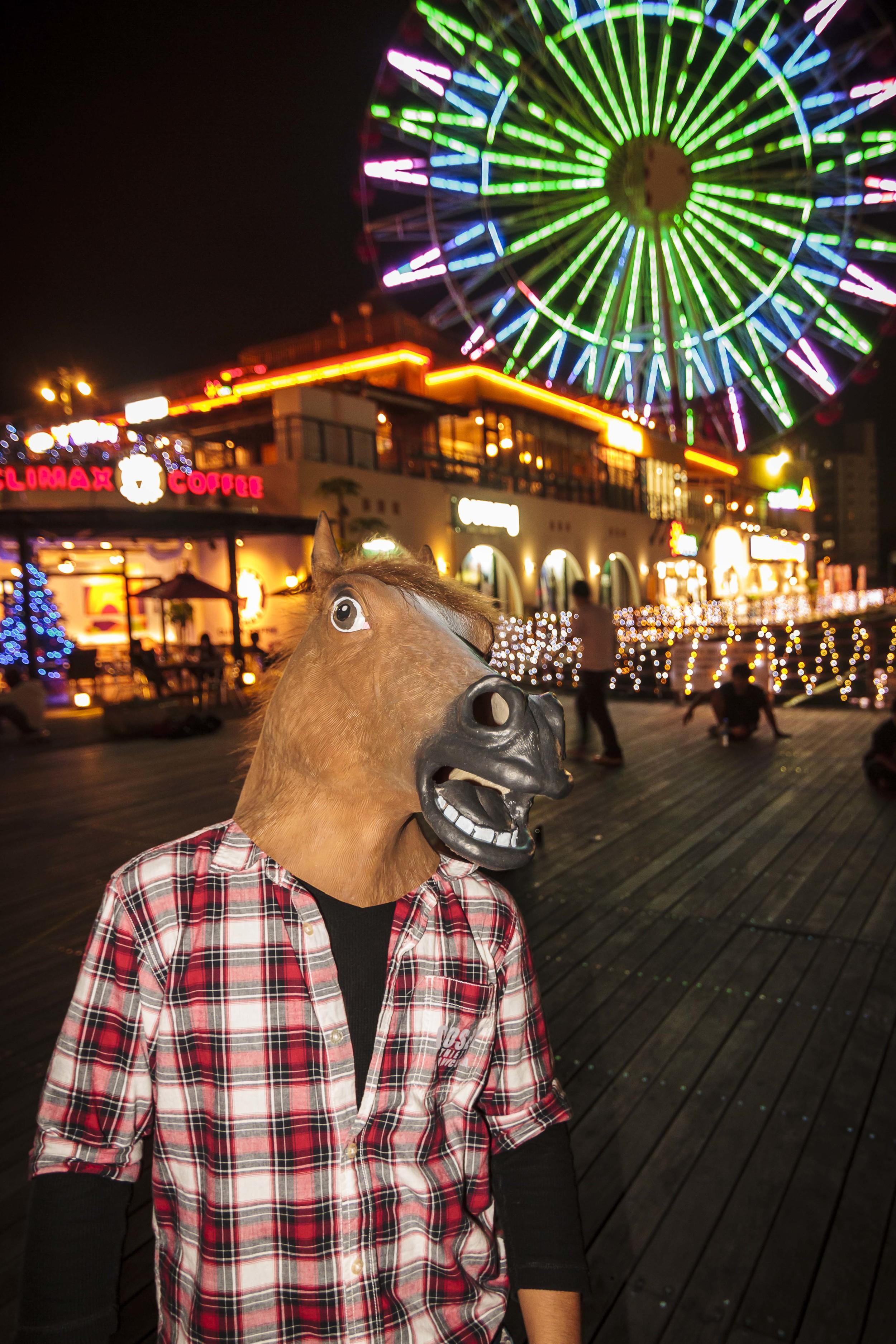 Flash Fun in Mihama 16 Dec 12-26.jpg