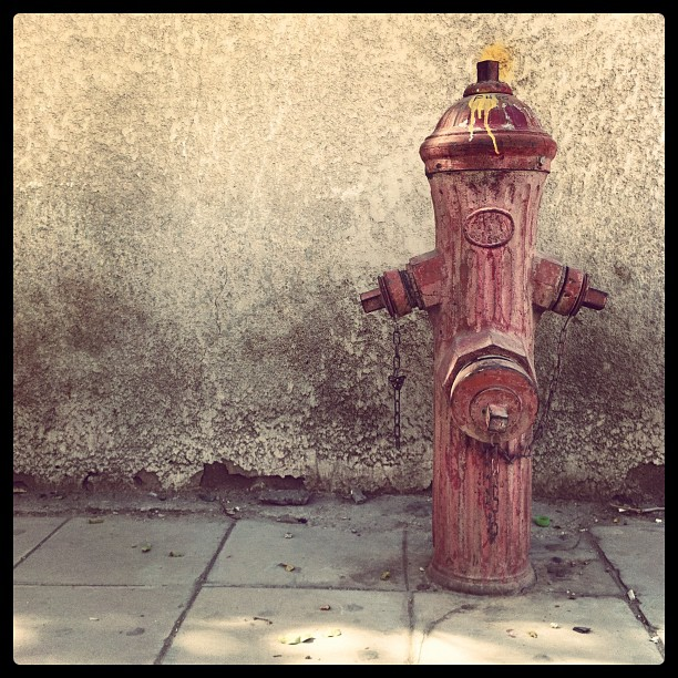 002---jan-2nd-2011---hydrant--365photoar_6618642775_o.jpg