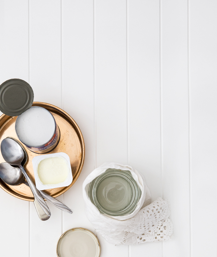 Erika Rax - Coconut Milk Yoghurt Ingredients