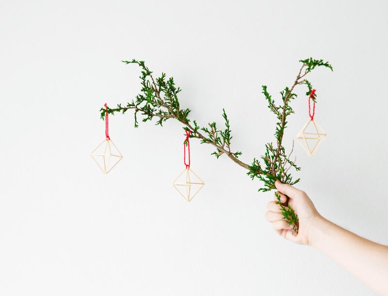 Erika Rax - Geometric Ornaments