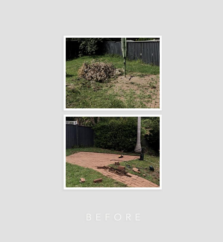 Backyard Project | Erika Rax