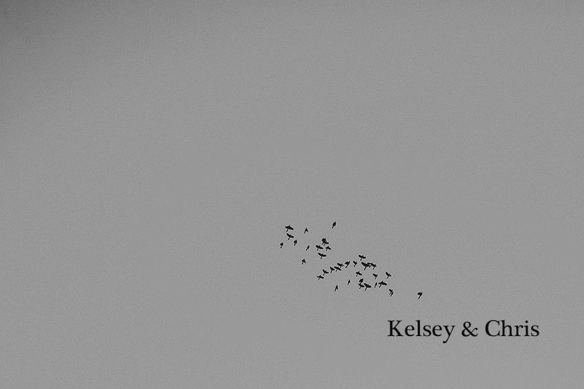 Kelsey+Chris_Blog_PuertoVallarta_DestinationWedding_Weddingphotography_KapePhotography_Mexico_003.jpg