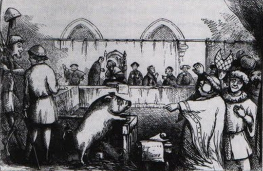 "Fig. 28. ""Trial of a Sow and Pigs at Lavegny"" from ""The Book of Days,"" 1863 (image is in the public domain)"