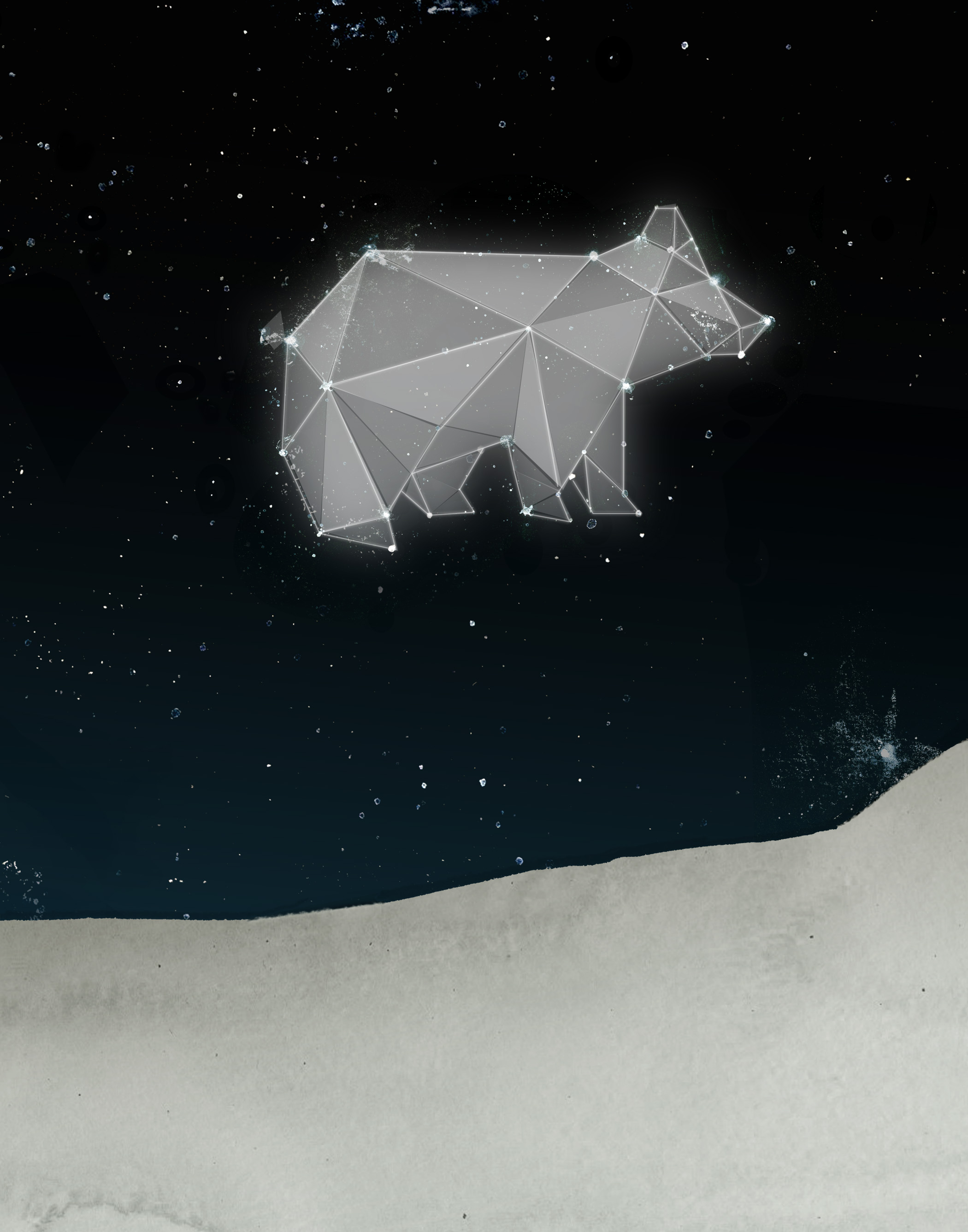 StarBear_01C.jpg