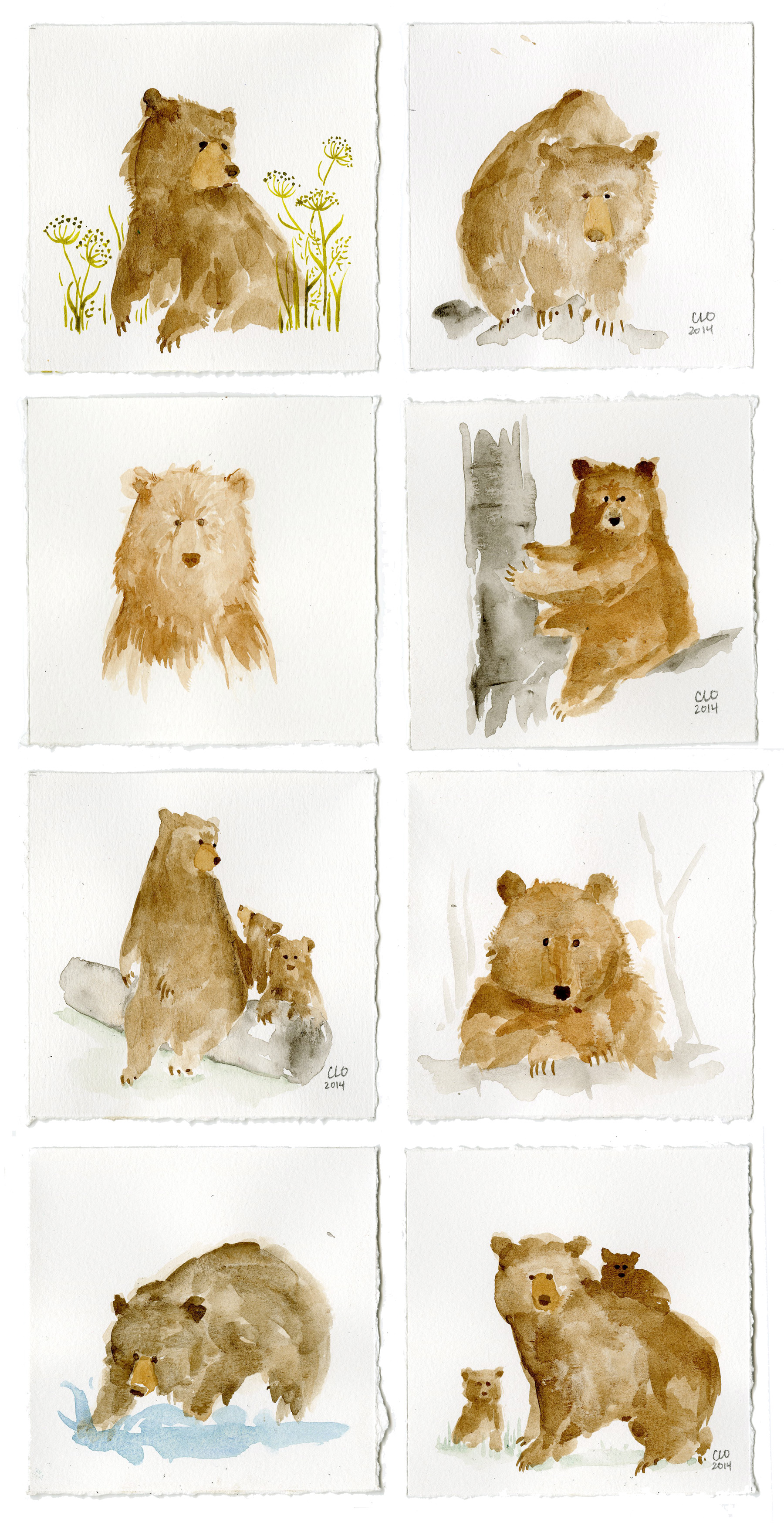 Watercolorbears_CLO