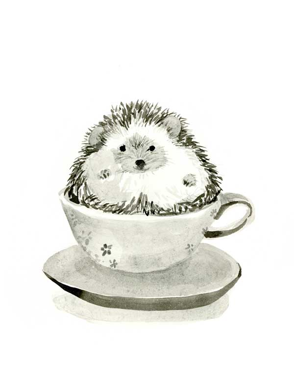 Hedgie in a Teacup #1