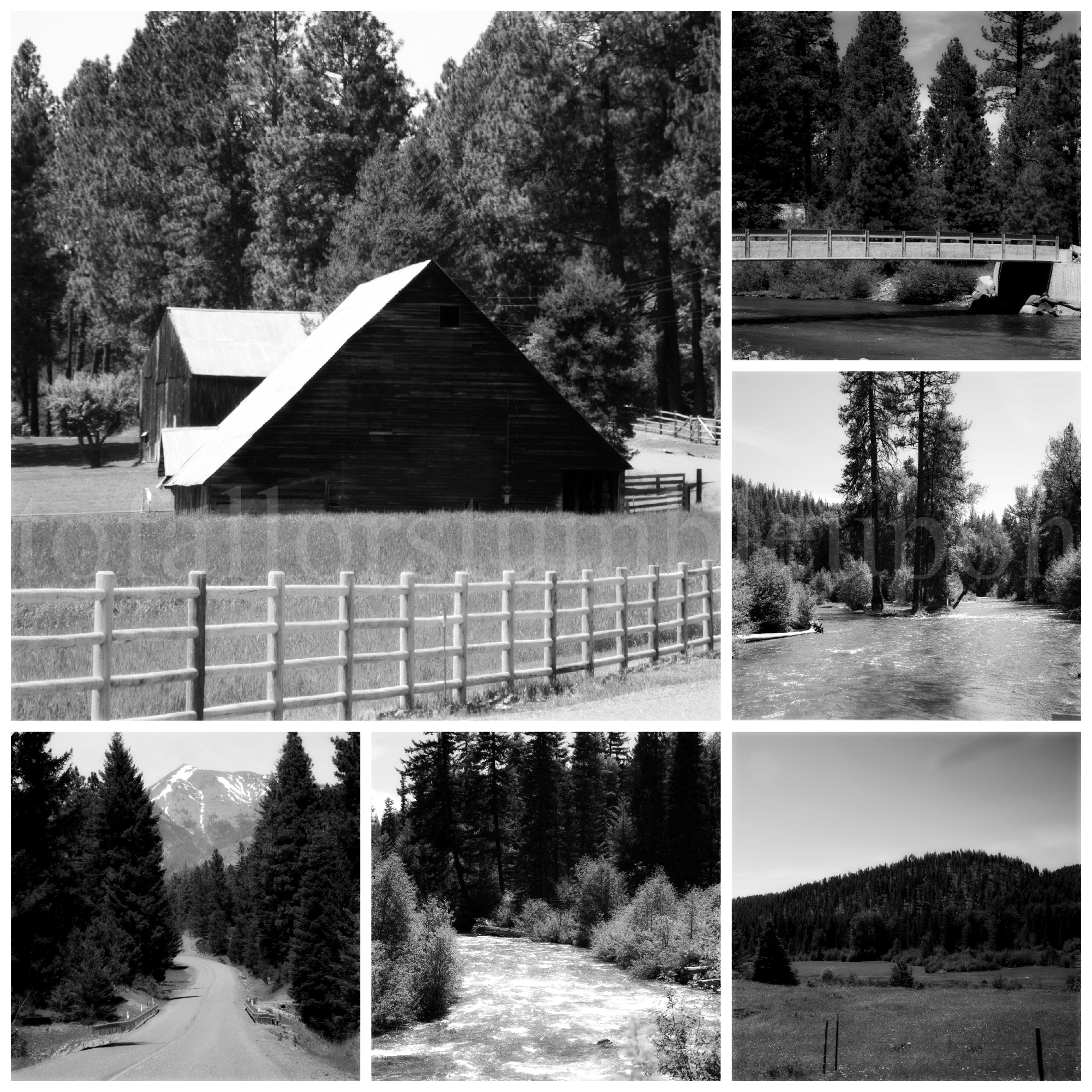 PicMonkey Collage 2b.jpg