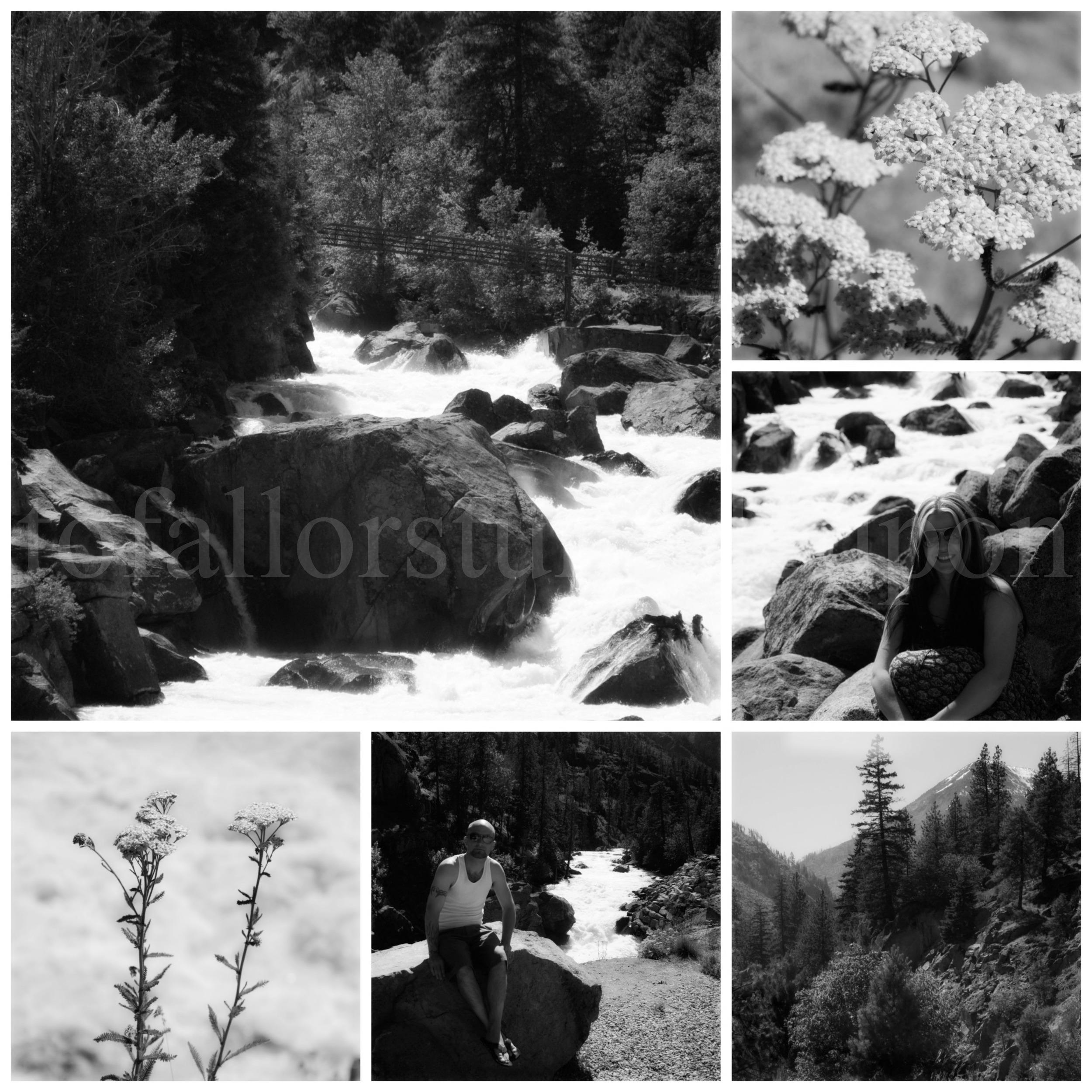 PicMonkey Collage 12 a.jpg
