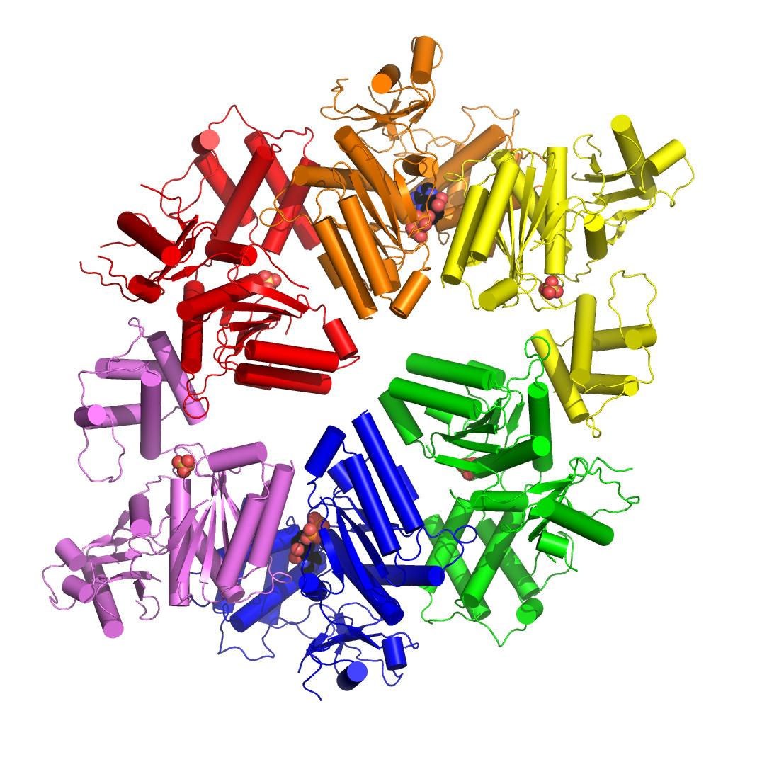 C. elegans PCH-2