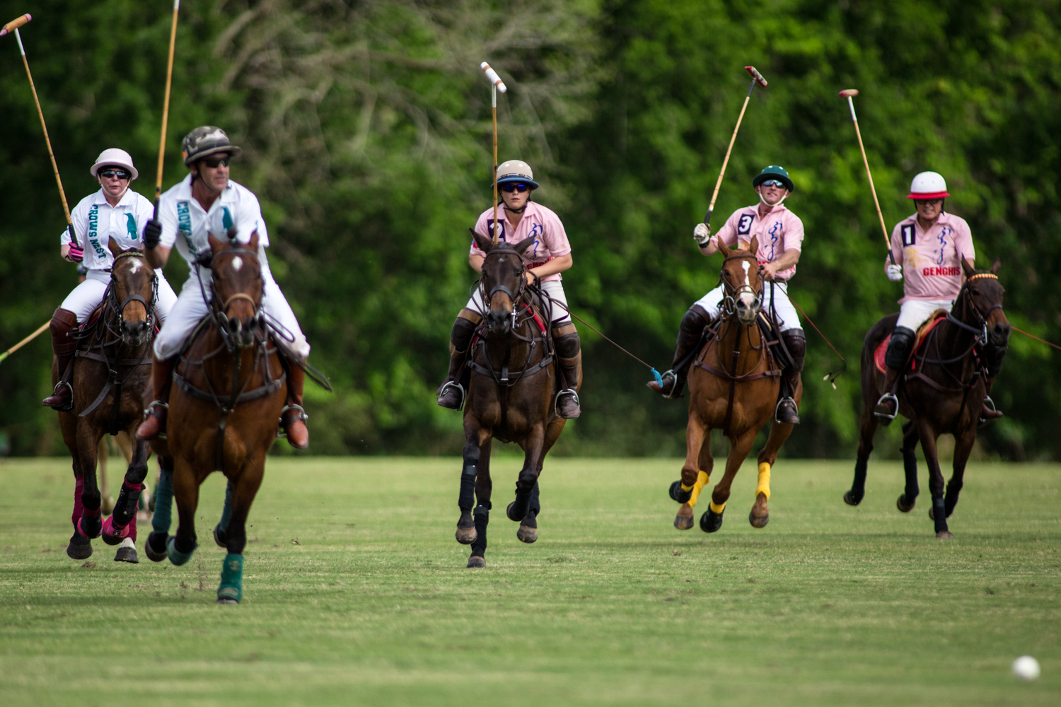 Hudspeth (middle) along with her teammates and opponents ride towards the ball during a scrimmage match at the Houston Polo Club on April 1, 2017. Polo teams are made up of both sponsors as well as professional players. Sponsors are usually independently wealthy and provide the funds for professional players to maintain their ponies as well as play.