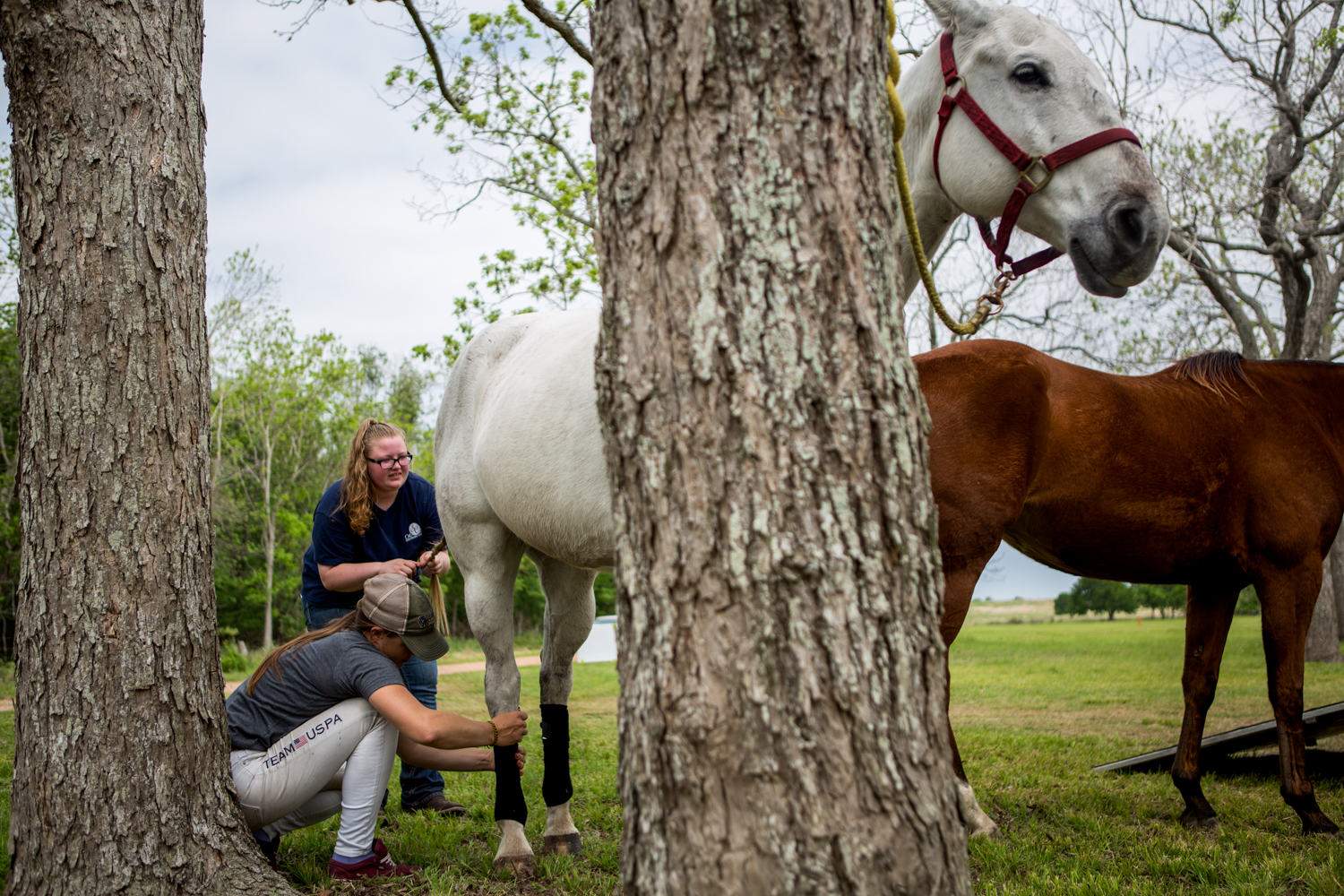 Hudspeth and her groom Erica wrap the horses' legs before a charity polo match in McFaddin, Texas, a small unincorporated community near Victoria, Texas. The wraps, made of fleece, are used to protect the horses legs and to provide support during games.