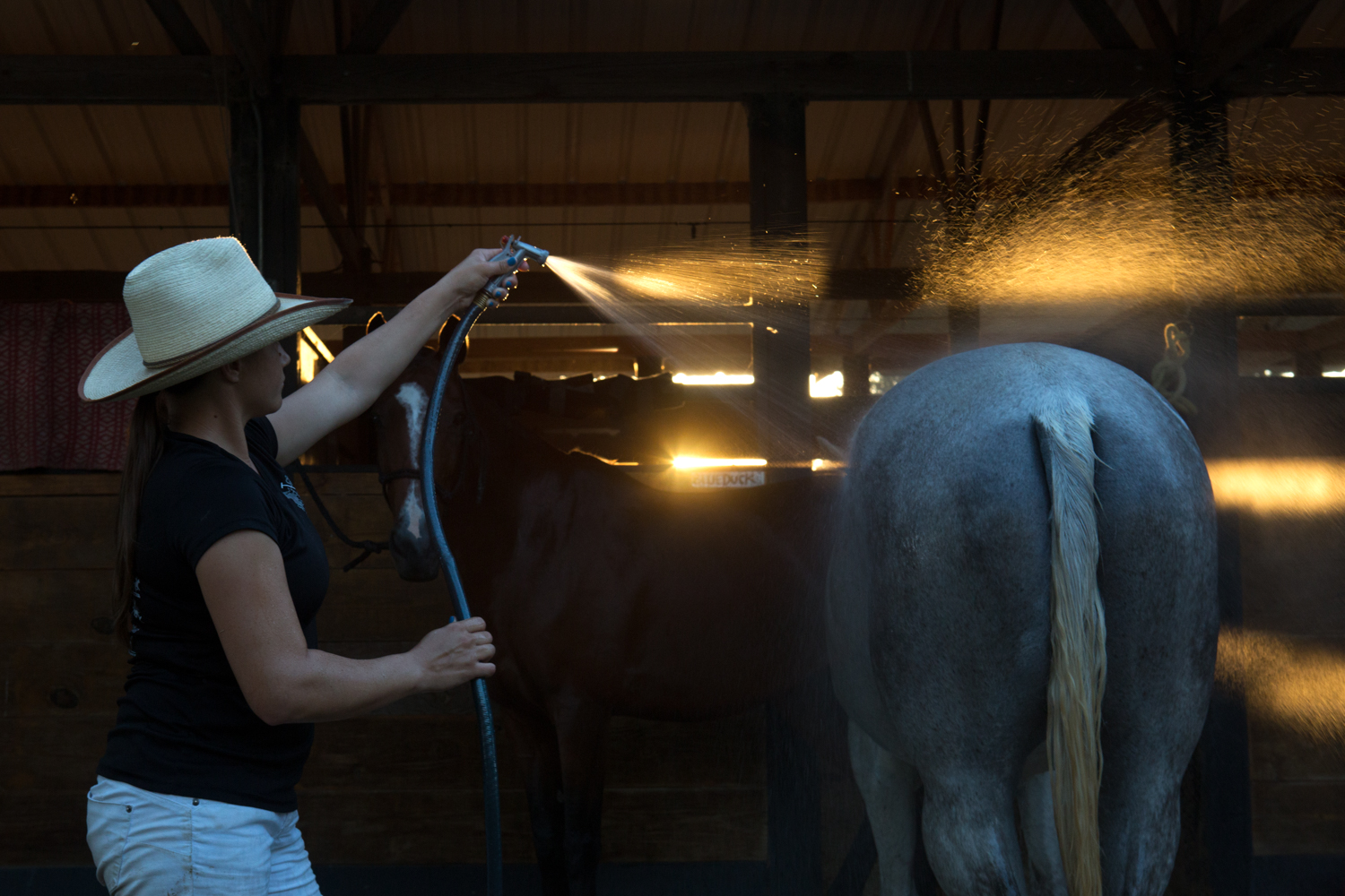 Hudspeth rinses the horses early on a Sunday the morning in preparation for a game in Wharton, Texas. During the Houston Polo Season, she rents a barn and apartment in Brookshire, Texas and wakes up before sunrise on game days to make preparations before having to drive into Houston or Wharton, both about an hour away from the barn.