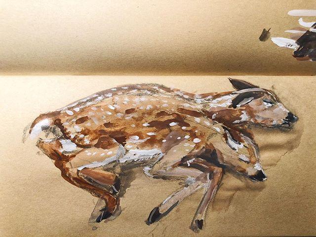Siamese fawn . . . Gouache sketch